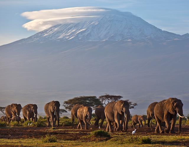 7.mt kilimanjaro